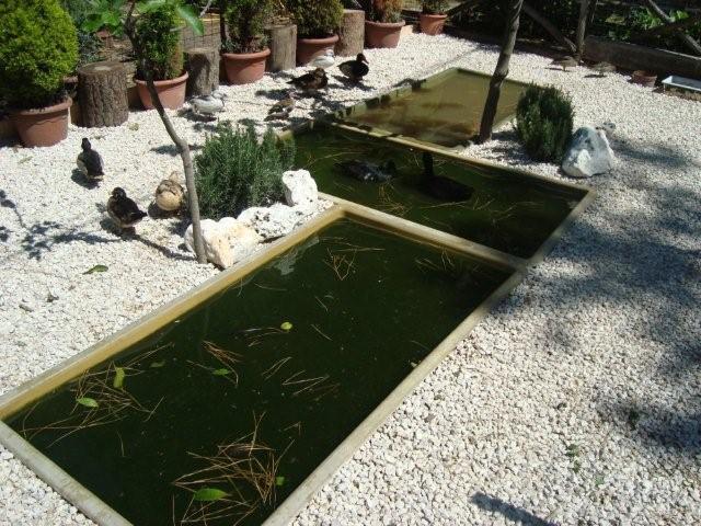 vasche in vetroresina per laghetti da giardino cocincina